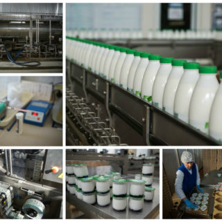 Работа в Польше на молочном складе