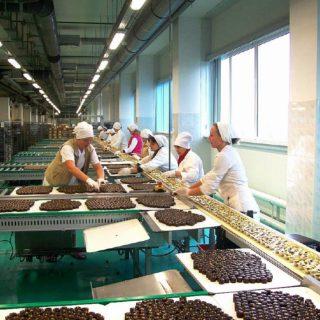 Работа в Польше для на шоколадной фабрике