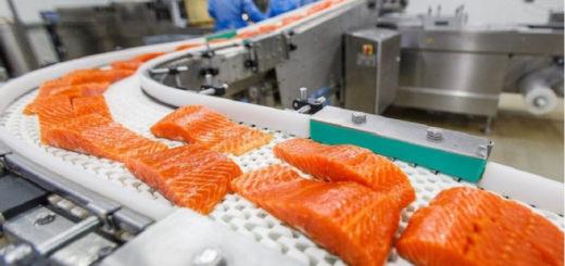 Работа в Польше на рыбный завод
