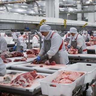 Работа в Польше на мясокомбинате