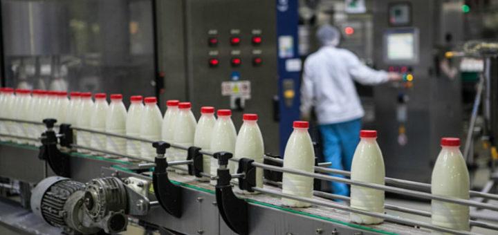 Работа в Польшедля мужчин и женщин на молокозаводе
