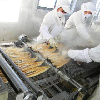 Работа в Польше на производство суши
