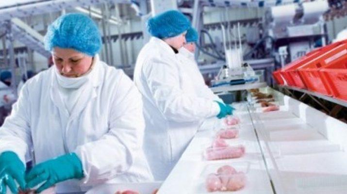 Работа в Польше на упаковке курицы
