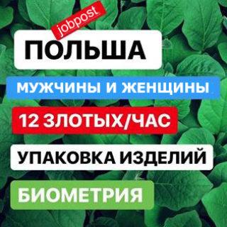 Работа в Польше 12 злотых в час