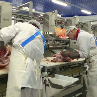 Работа в Польше на мясокомбинате Отзывы