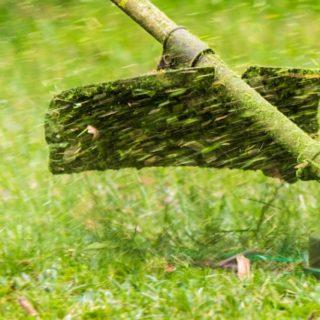 Работа в Польше на покосе травы