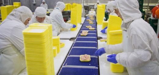 Работа в Польше на упаковке готовой продукции
