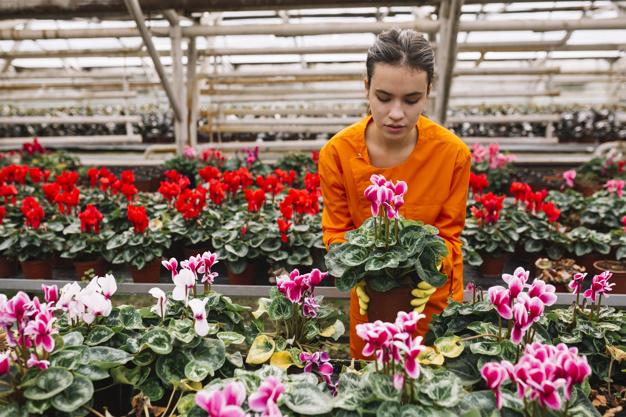 Работа в Польше садовником