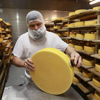 Работа в Чехии на сырной фабрике