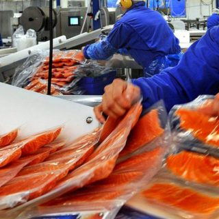 Работа в Польше на обработке рыбы