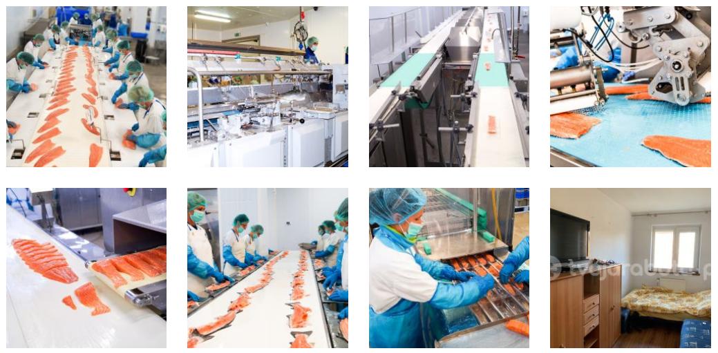 Работа в Польше на рыбном предприятии